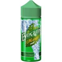 evergreen mango mint 22446 fv